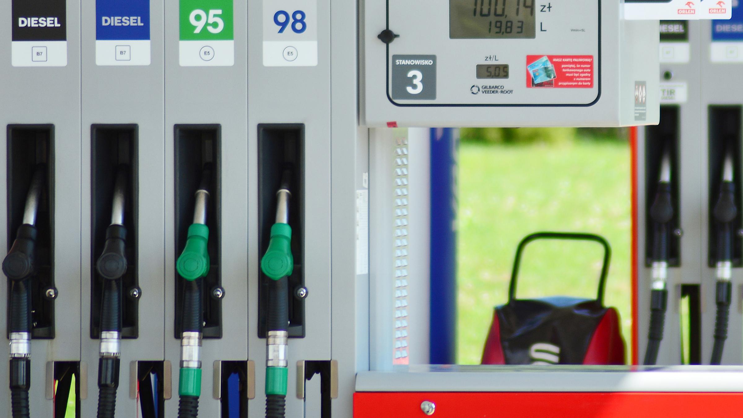 Młodzieńczy Orlen, Lotos, BP, Shell, Circle K wprowadzają nowe etykiety paliw MF08